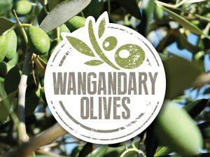 Wangandary Olives Logo