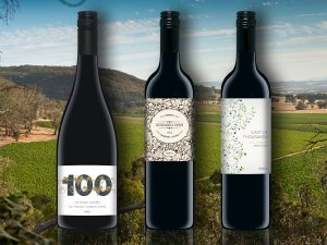 Wine Label Concepts