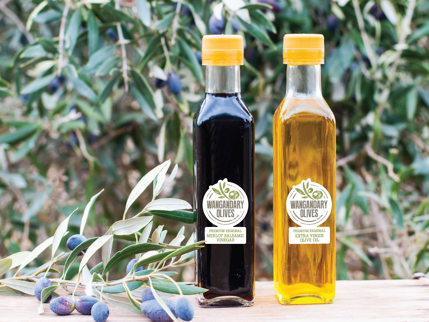 Wangandary Olives Bottle Labels