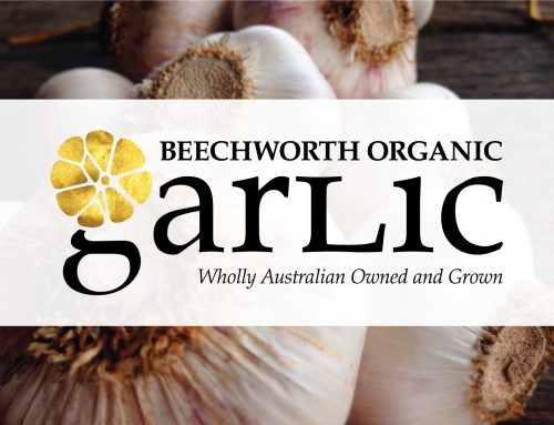 Beechworth Garlic Branding and Print Collateral