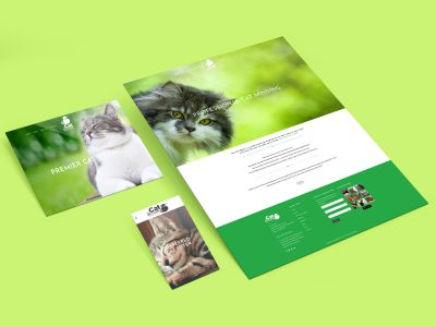 Purple Possum Design – Web Design Wangaratta – The Cat Butler
